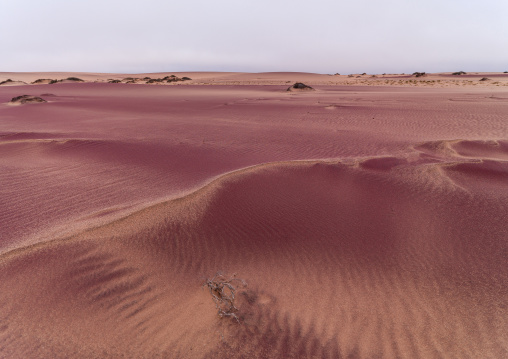 Pink sand in the namib desert, Namibe Province, Iona National Park, Angola
