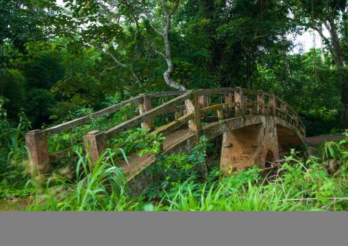 Bridge in the botanical garden, Cuanza Norte, N'dalatando, Angola