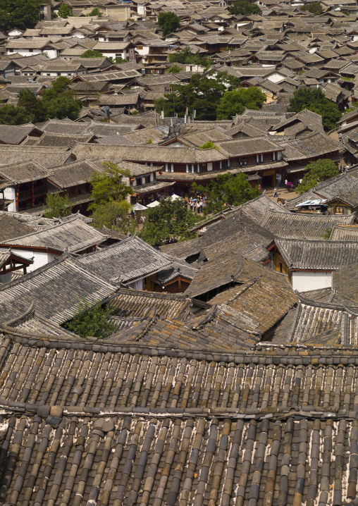 Roof Tops Of Old Town, Lijiang, Yunnan Province, China