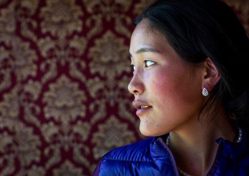 Portrait of a beautiful tibetan nomad woman, Tongren County, Longwu, China