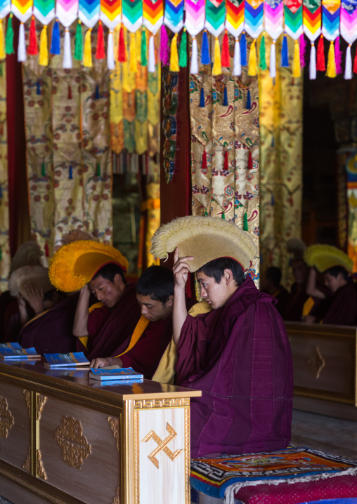 Young monks from yellow hat sect praying in Bongya monastery, Qinghai province, Mosele, China