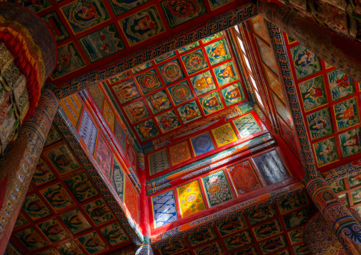 Decorated ceiling in Chonjgon monastery, Tongren County, Longwu, China
