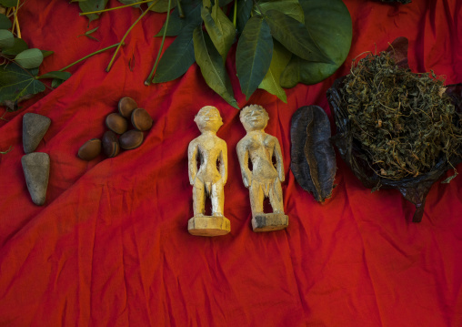Benin, West Africa, Bonhicon, statutes used for a voodoo ceremony