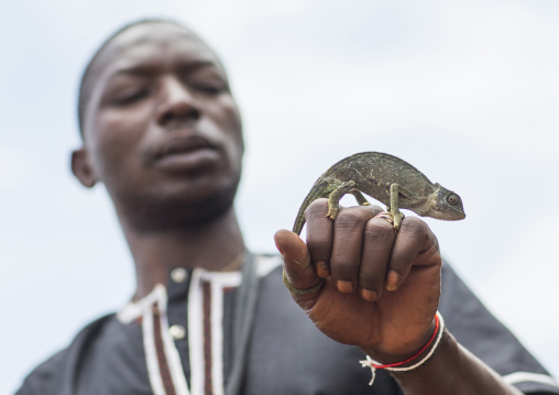 Benin, West Africa, Bonhicon, kagbanon bebe voodoo priest with a chameleon on his hand