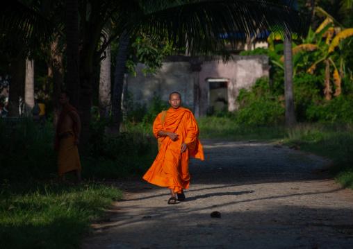 Cambodian monk walking in the street, Battambang province, Battambang, Cambodia