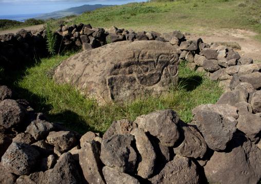 Petroglyph In Rano Kau, Easter Island, Chile