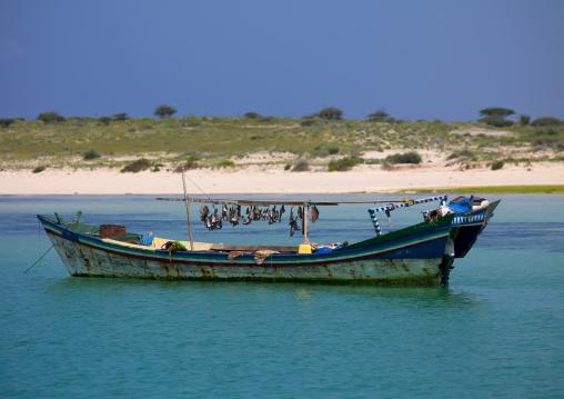 Eritrea, Horn Of Africa, Dahlak, shark fins in dahlak islands