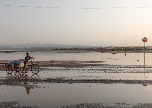 Eritrean boy carrying fish on a bicycle, Northern Red Sea, Massawa, Eritrea