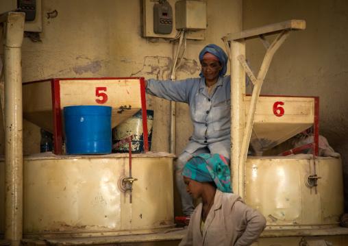 Eritrean worker in a flour mill, Central region, Asmara, Eritrea