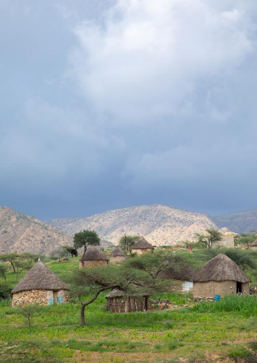 Bilen village with thatched huts, Semien-Keih-Bahri, Elabered, Eritrea