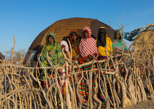 Afar tribe women behind a wooden fence in front of their hut, Afar region, Mile, Ethiopia