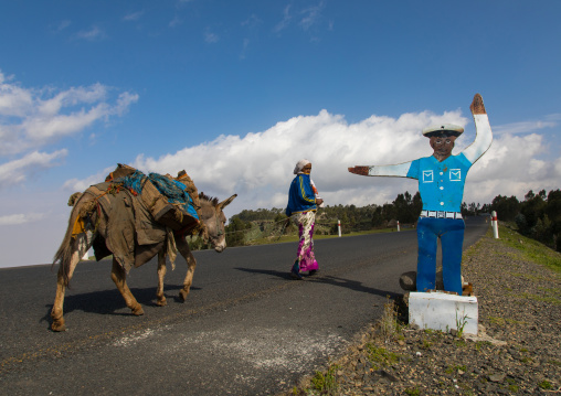 One woman with a cow passing in front of a fake cop mannequin along the road, Gurage Zone, Butajira, Ethiopia