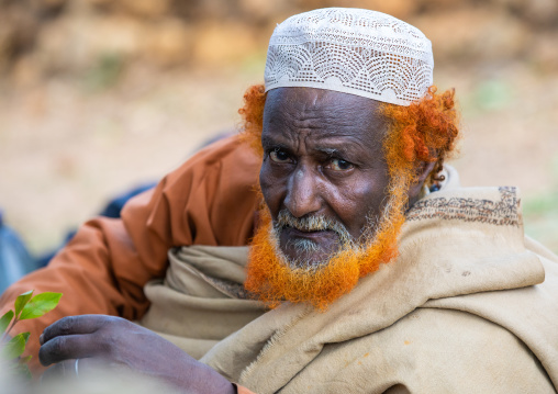 Harari man with a red beard chewing khat during a sufi celebration, Harari Region, Harar, Ethiopia