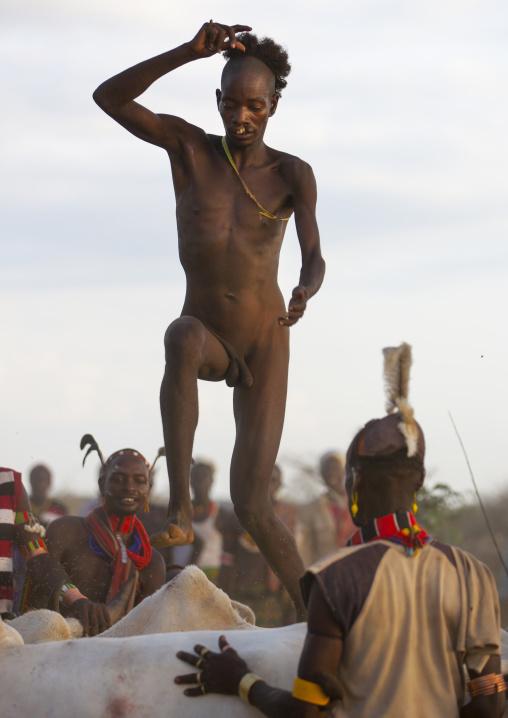 Bull Jumping Ceremony In Hamar Tribe, Turmi, Omo Valley, Ethiopia