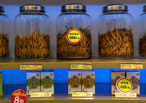 Caterpillar fungus for sale in a shop, Kowloon, Hong Kong, China