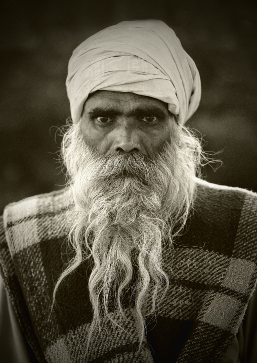 Portrait Of An Old Sadhu Wearing A Turban And A Long White Beard, Trichy, India