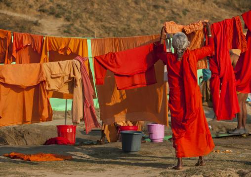 Woman Washing Clothes, Maha Kumbh Mela, Allahabad, India