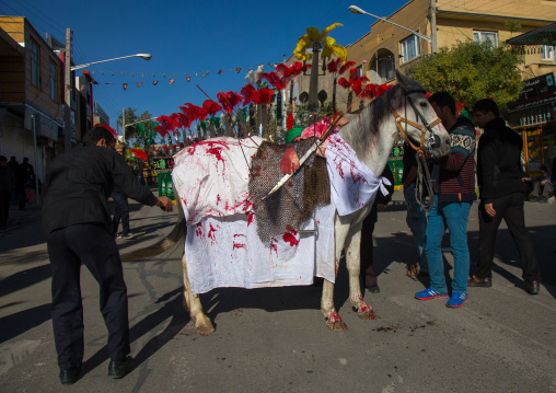 Horse Of Iman Hussein With Fake Blood On It During The Parade Of Ashura Celebrations, Kurdistan Province, Bijar, Iran
