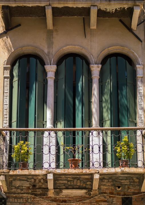 Balcony and window of an old house, Veneto Region, Venice, Italy