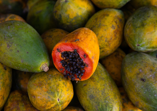 Orange open papaya with black seeds, Moyen-Comoé, Abengourou, Ivory Coast