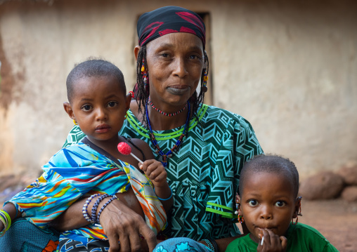 Portrait of a Peul tribe mother with her children, Savanes district, Boundiali, Ivory Coast