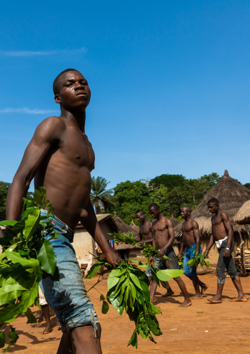 Dan tribe men dancing with leaves during a ceremony, Bafing, Gboni, Ivory Coast