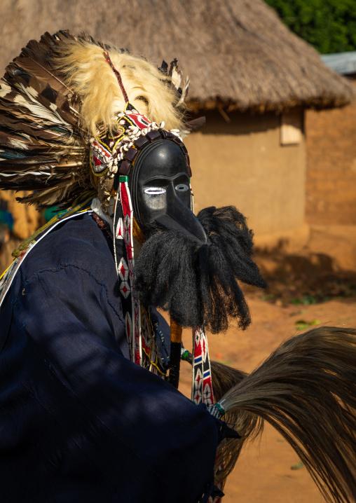 Dan tribe mask sacred dance during a ceremony, Bafing, Gboni, Ivory Coast
