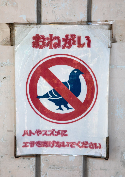 Do not feed the pigeons sign, Kanto region, Tokyo, Japan