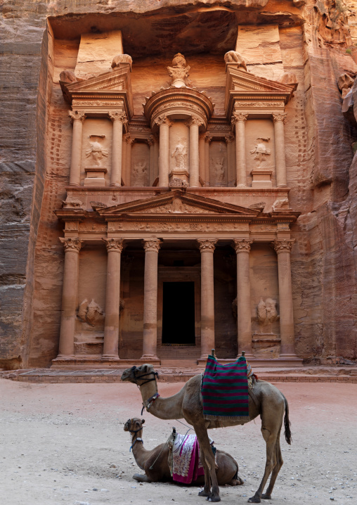 Camels In Front Of Al Khazneh Treasury Ruins, Petra, Jordan
