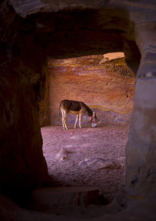 Inside A Tomb, Petra, Jordan