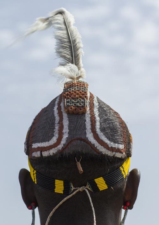 Dassanech tribe man with clay buns on the head, Turkana lake, Loiyangalani, Kenya