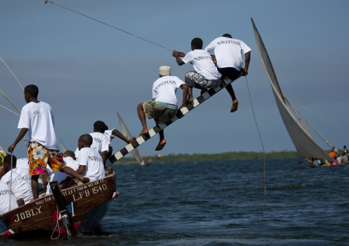 Steerage of dhow during the dhow race, Maulidi festival, Lamu, Kenya