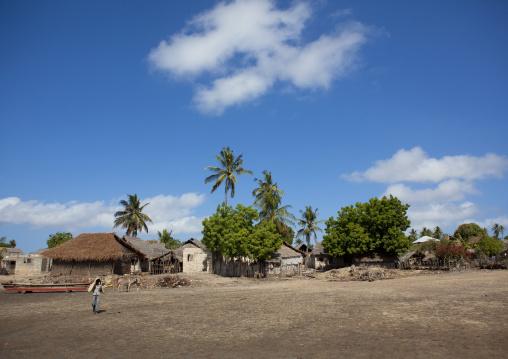 Traditional village with thatched roofs, Lamu County, Matondoni, Kenya