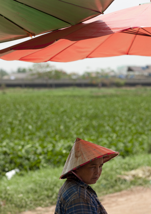 Market seller under an umbrella, Vientiane, Laos