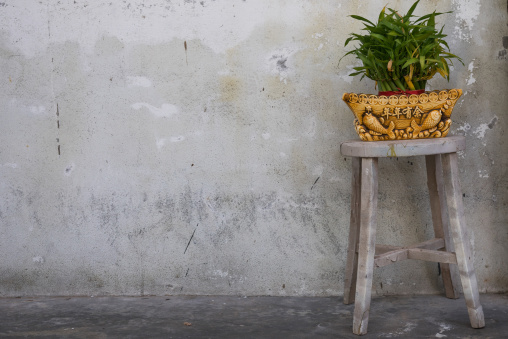 Plant In Pot On A Stool In The Street, Penang Island, George Town, Malaysia