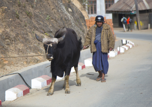 Man with a gaur in the street, Mindat, Myanmar