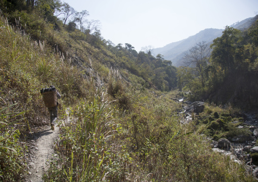 Porter on a narrow path in the hills, Mindat, Myanmar