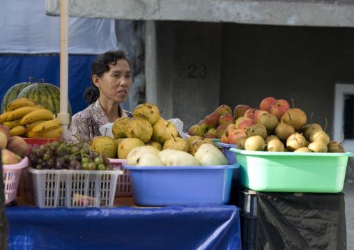 North Korean woman selling fruits in the street, Pyongan Province, Pyongyang, North Korea