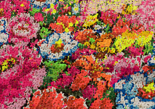 Flowers made by children pixels holding up colored boards during Arirang mass games in may day stadium, Pyongan Province, Pyongyang, North Korea