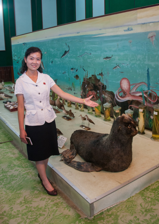 North Korean guide presenting a stuffed sea lion offered by Kim Jong il in Songdowon international children's union camp, Kangwon Province, Wonsan, North Korea