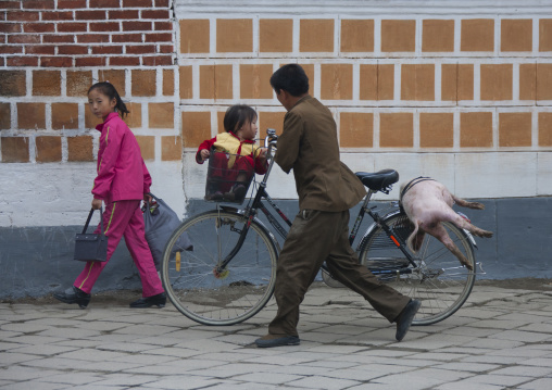 North Korean man pushing a bicycle with a pig on the luggage rack, North Hwanghae Province, Kaesong, North Korea