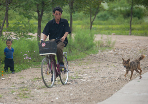 North Korean man cycling with a dog attached to his bicycle, North Hwanghae Province, Kaesong, North Korea