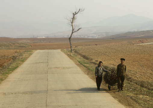 North Korean couple pushing a cart loaded with wood in the countryside, South Pyongan Province, Nampo, North Korea