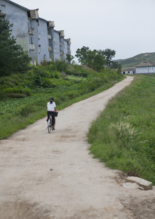 North Korean woman riding a bicycle in the countryside, North Hwanghae Province, Kaesong, North Korea