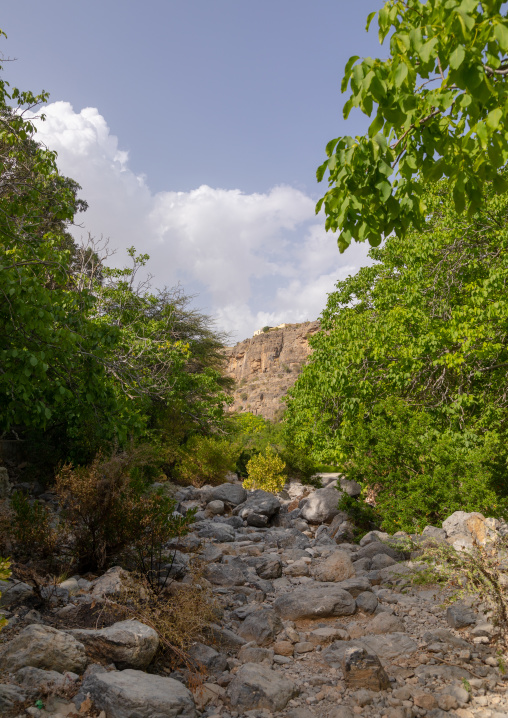 Dry wadi, Jebel Akhdar, Wadi Bani Habib, Oman