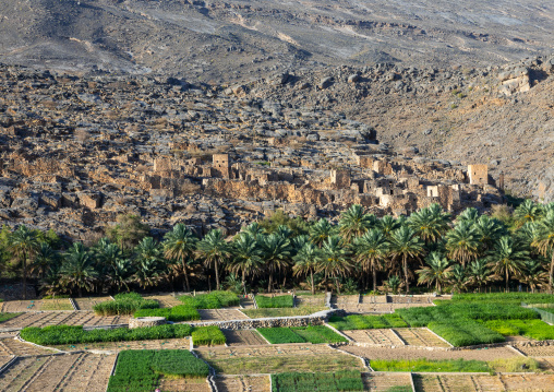 Old village in an oasis in front of the mountain, Ad Dakhiliyah Region, Riwaygh, Oman