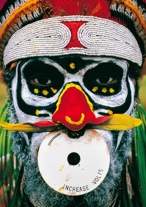 Highlander warrior with a modern nose ring decoration during a sing sing, Western Highlands Province, Mount Hagen, Papua New Guinea
