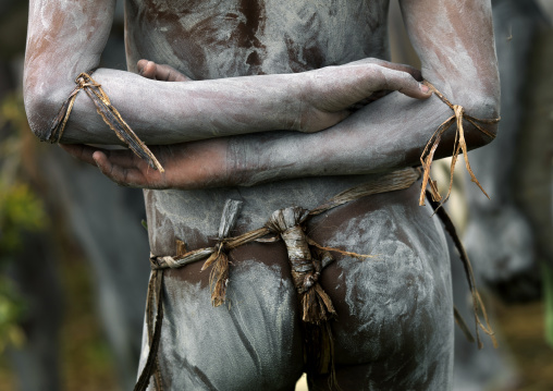 Mudman back from Asaro during a sing-sing, Western Highlands Province, Mount Hagen, Papua New Guinea