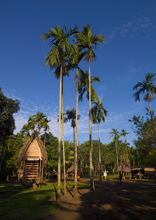 House in a village to store the yam roots, Milne Bay Province, Trobriand Island, Papua New Guinea