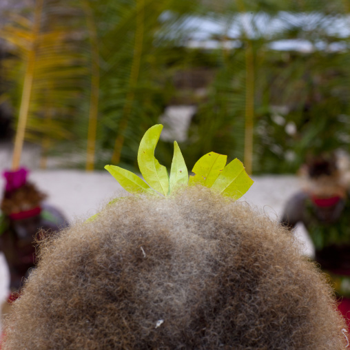 Paplieng tribe woman hair, New Ireland Province, Kavieng, Papua New Guinea